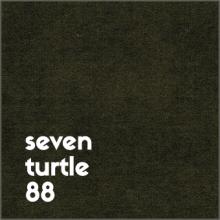 seven turtle 88