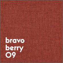 bravo berry 09