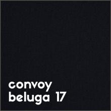 convoy beluga 17