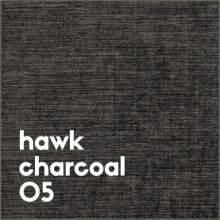 hawk charcoal 05