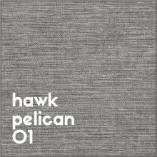 hawk-pelican-01