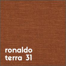 ronaldo terra 31